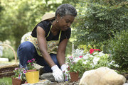 The Best Gardening Supply Sites On The Web